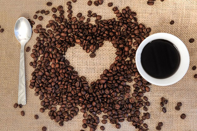 - Robusta beans tend to be used in Italian dark roasts and instant coffees, where as Arabica beans are used much more in upmarket coffee shops and for home roasting.