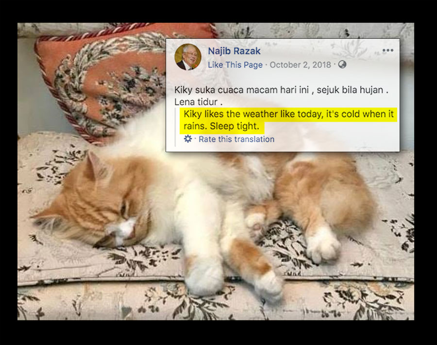 Najib-cat-v5.jpg
