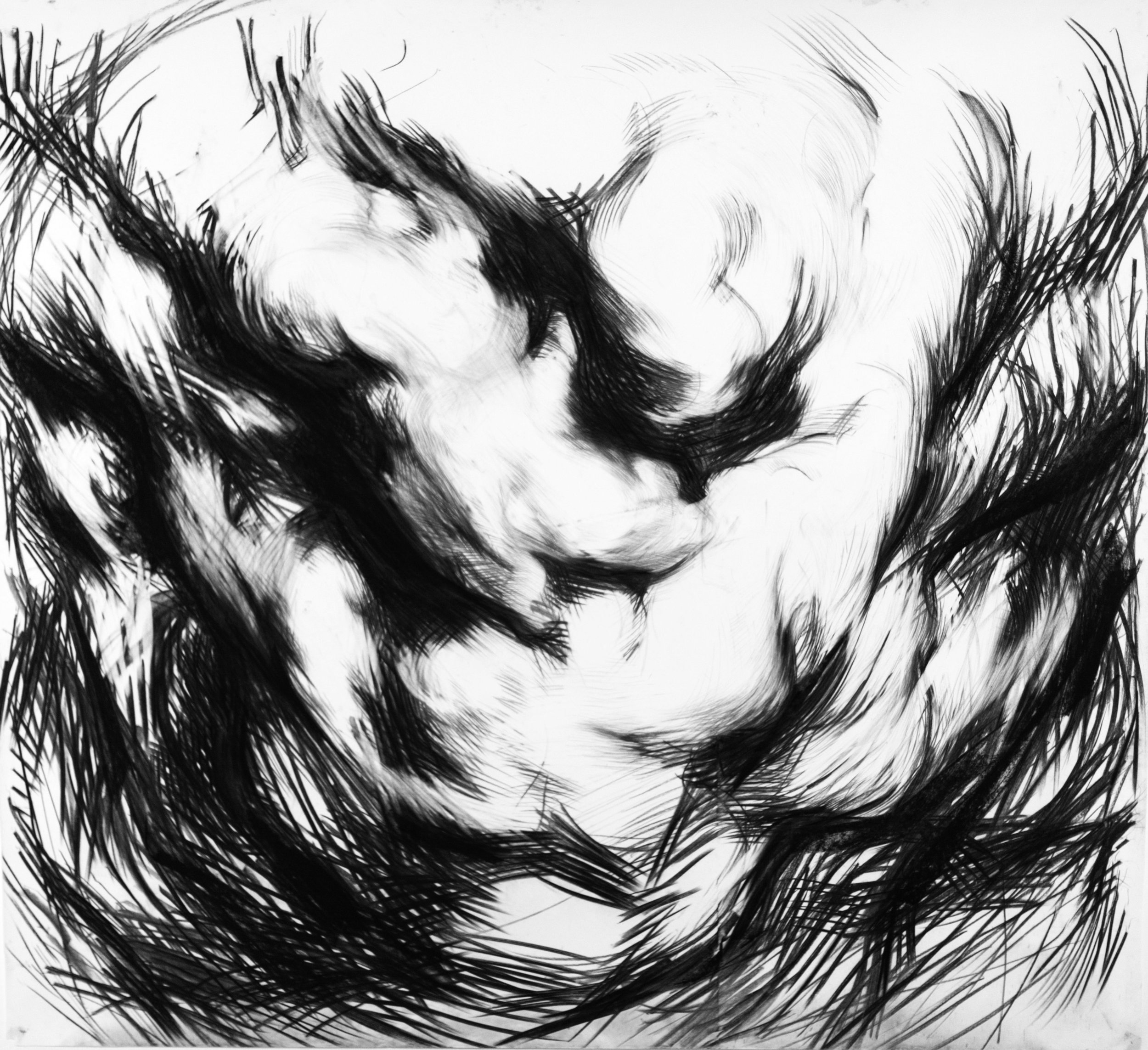 Cloud Study No.6,  2014   Charcoal on paper 110 x 110 cm