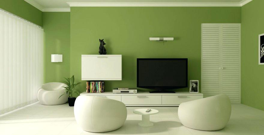 green-wall-color-living-room-relaxing-green-wall-paint-color-white-green-wall-color-psychology.jpg