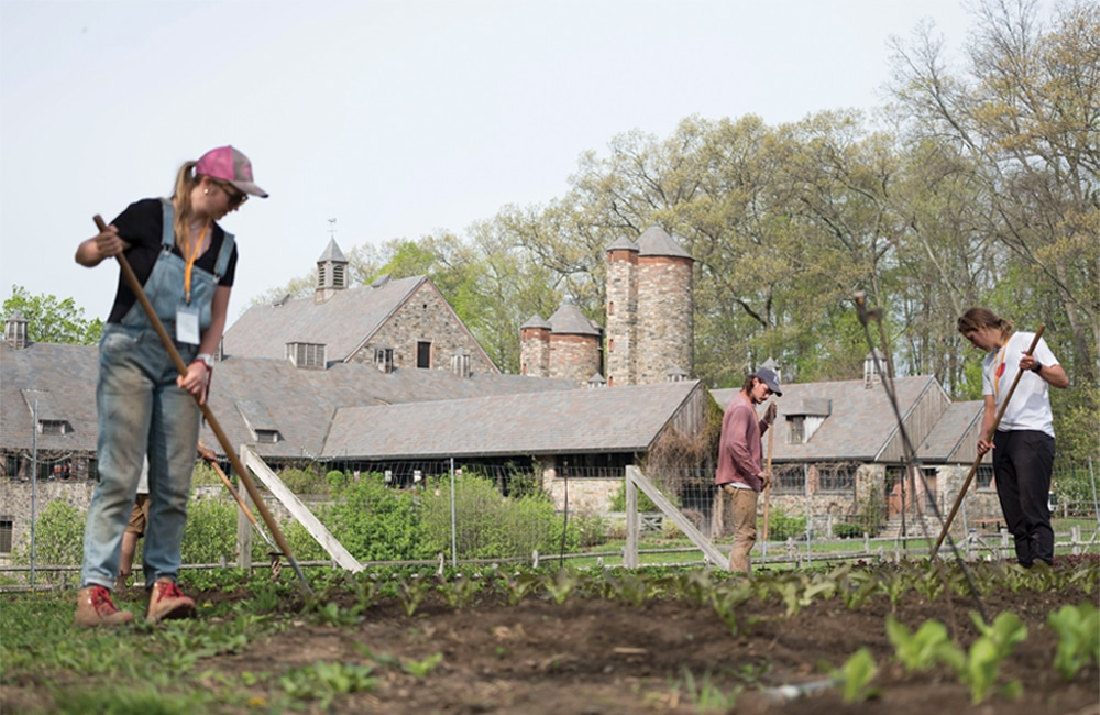 "Stone Barns - ""Stone Barns Center is transforming the way America eats and farms by creating a healthy, sustainable food system."""