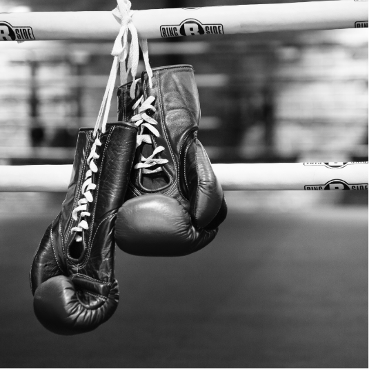 THE GYM    BOXING CLUB    LEARN MORE