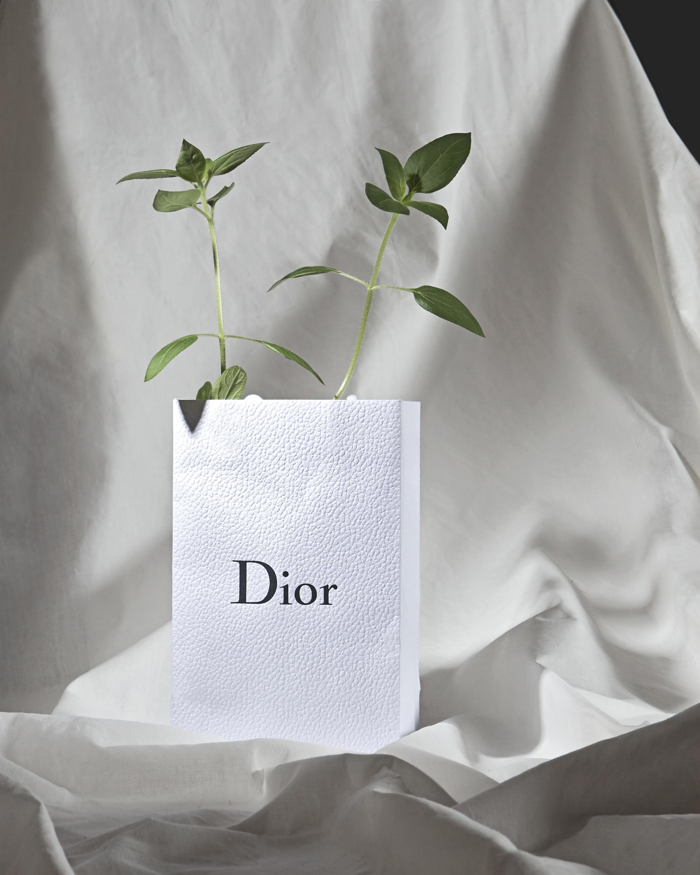 Box Dior
