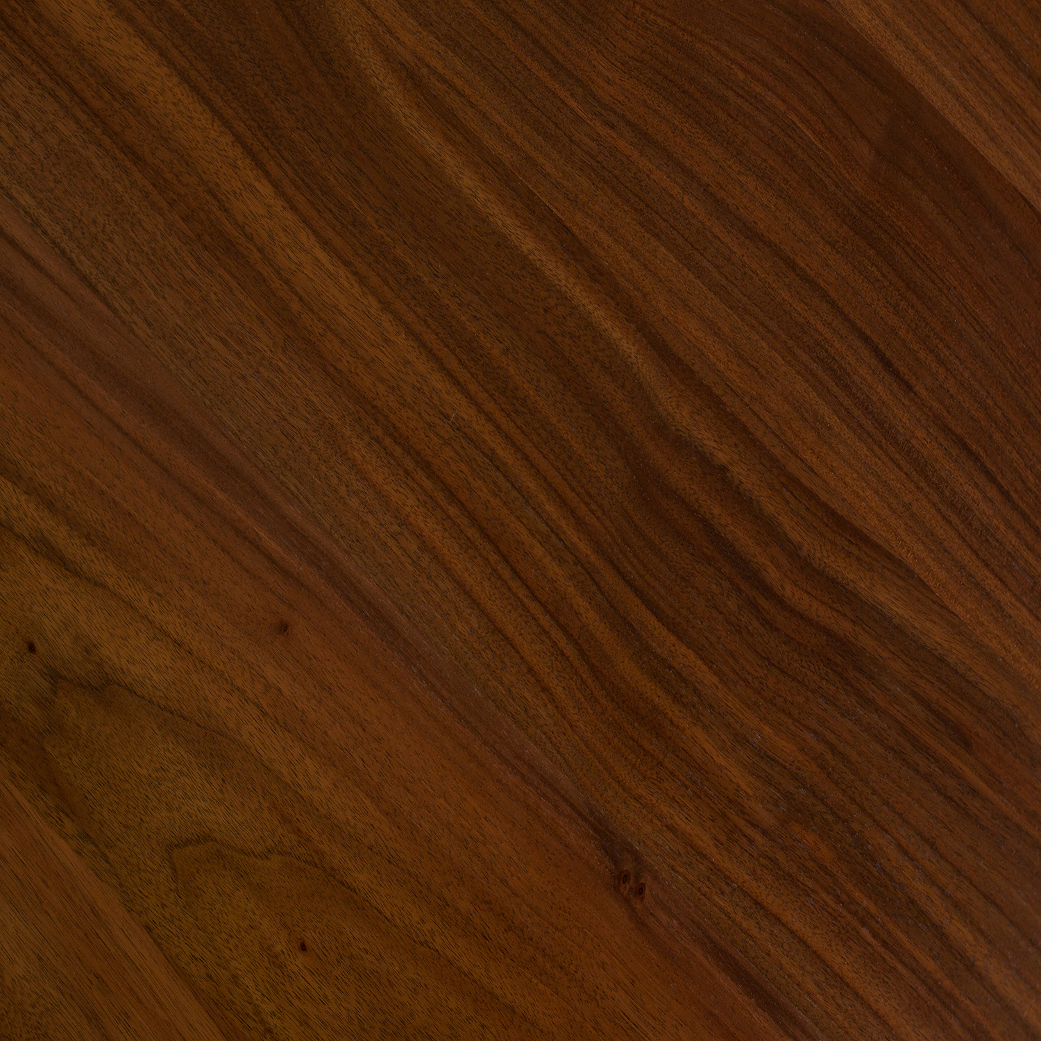Oregon black Walnut -