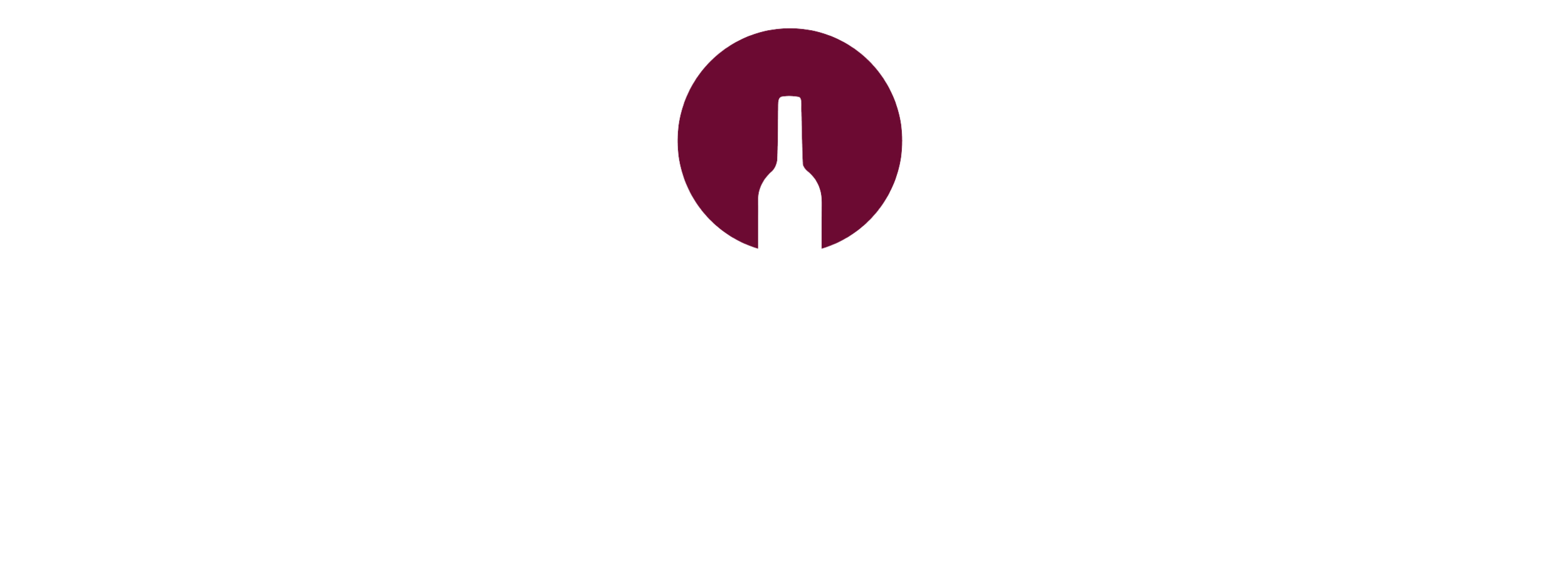 LOGOTYPE-VINAM sans fond-04-01.png