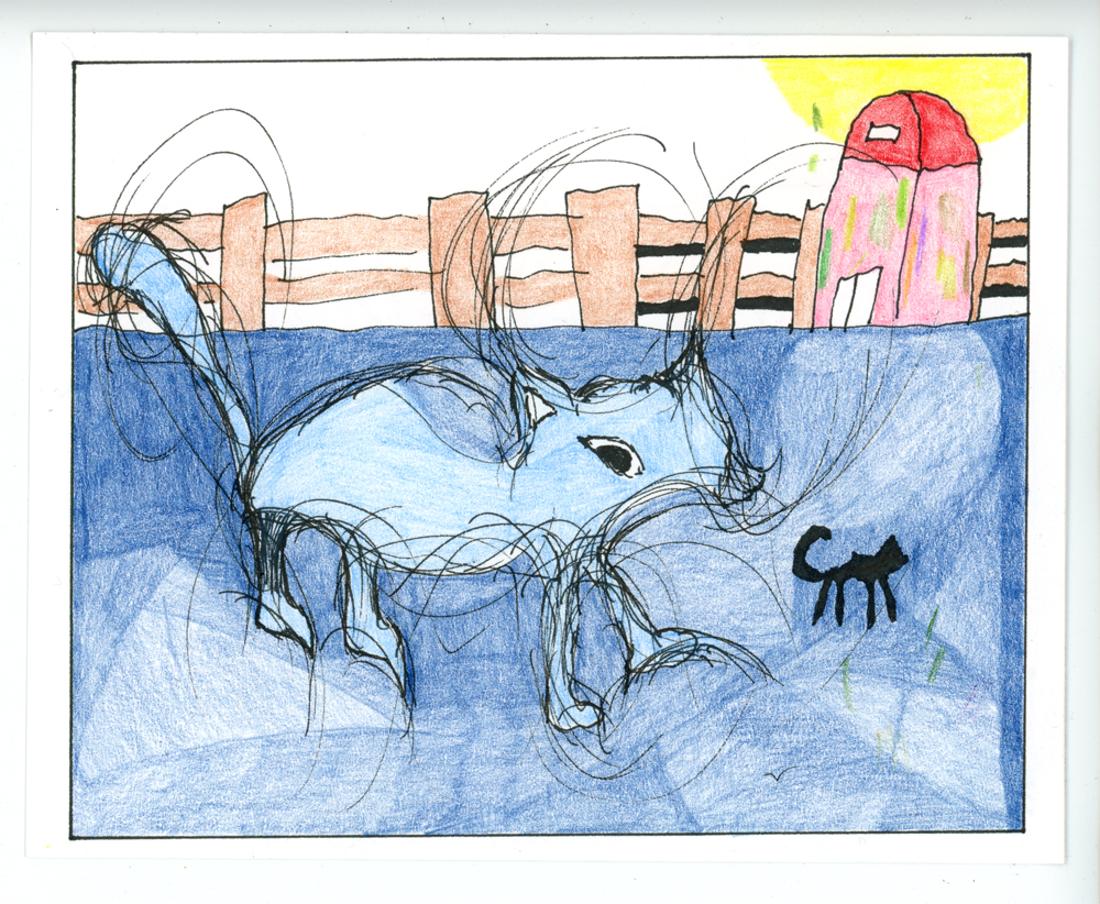 blue-cat_web.jpg