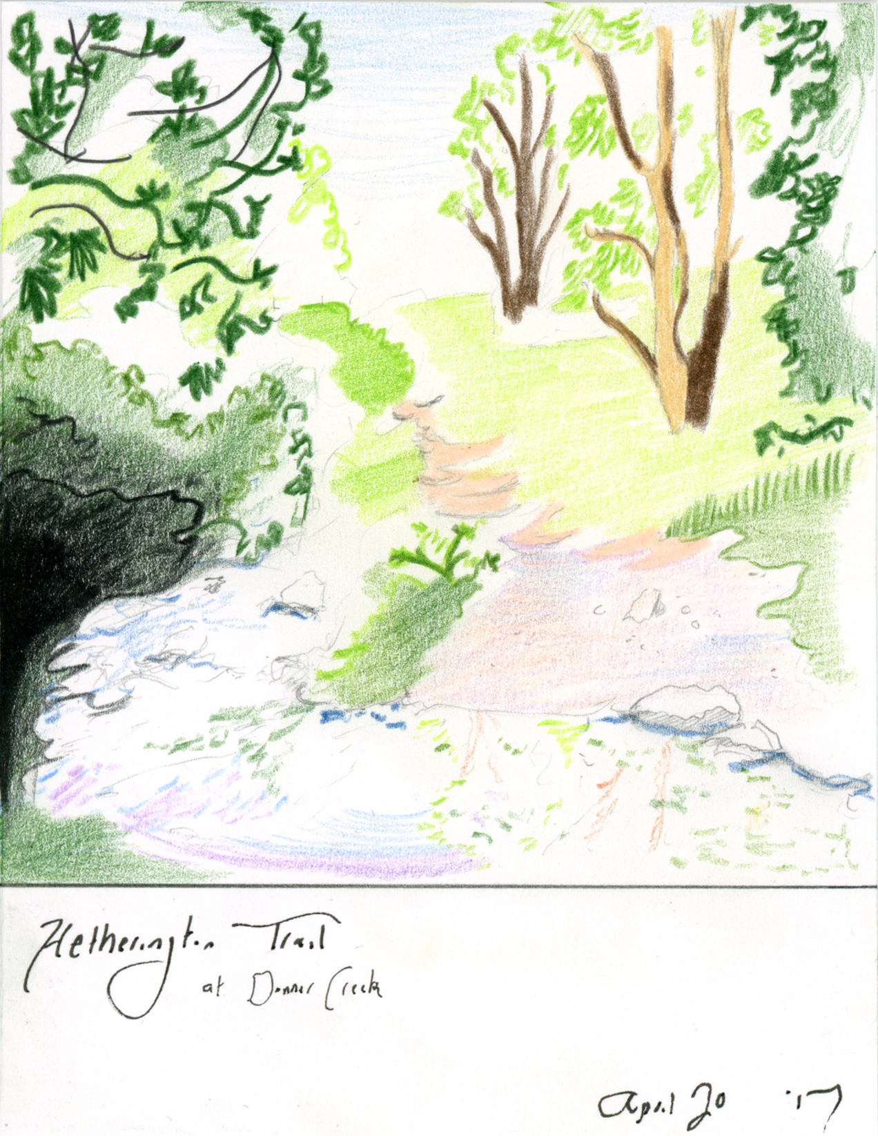 Mt-Diablo-Heathering-Trail-at-Donner-Creek_Web.jpg