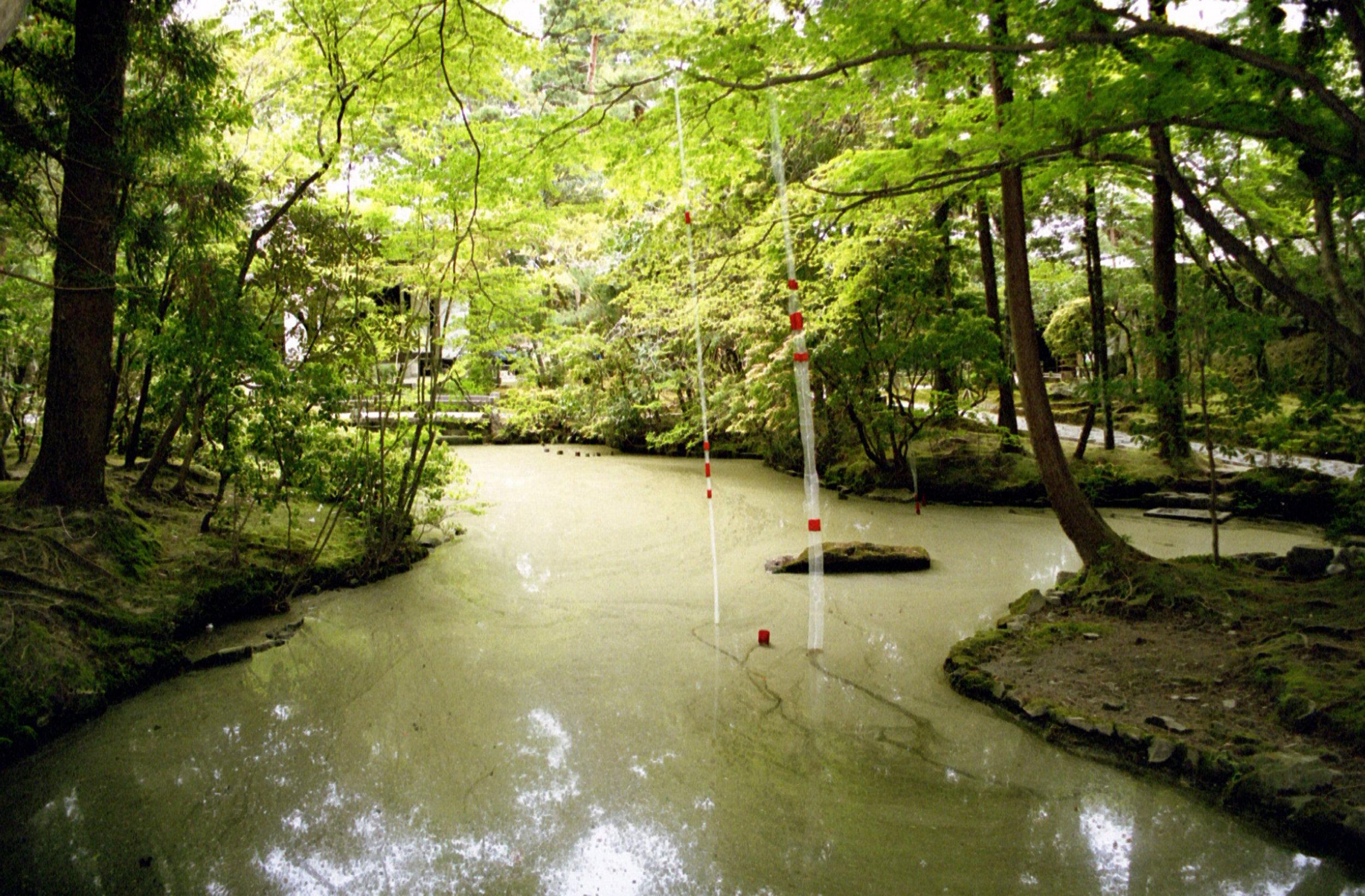 Japan_Echelman_PhotoStudioEchelman_004_4.jpg