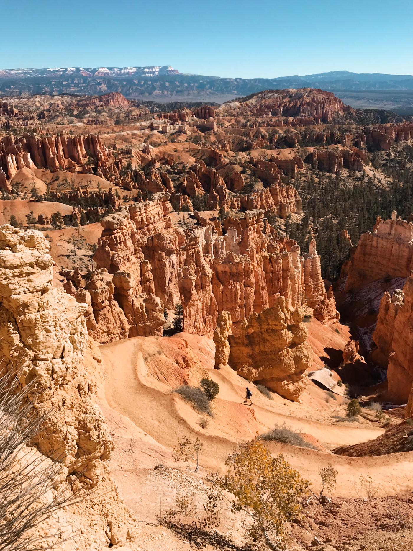 View down Bryce Canyon trial.