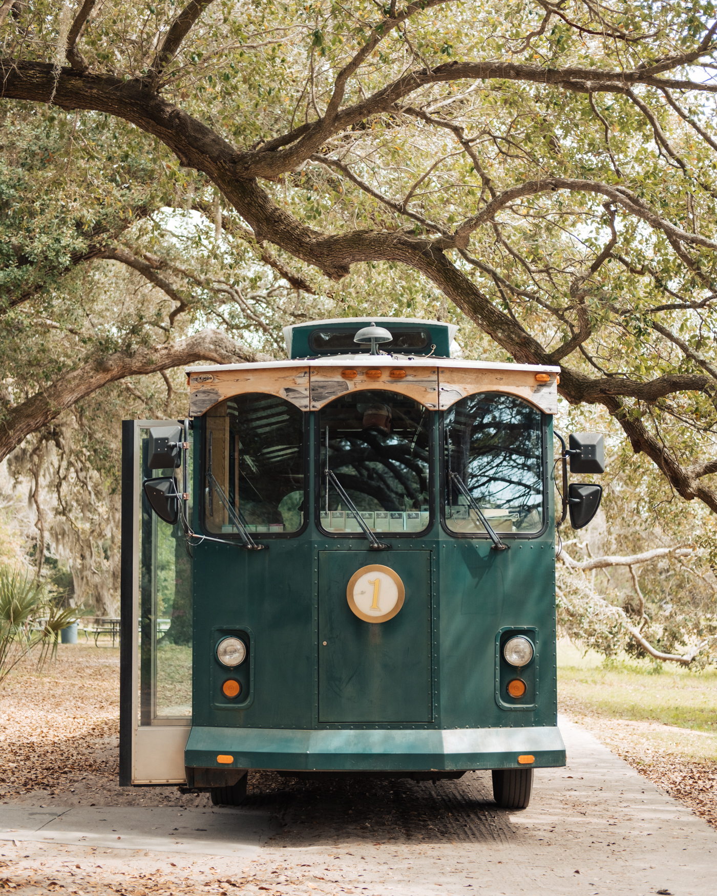 charleston-tea-plantation-trolley.jpg