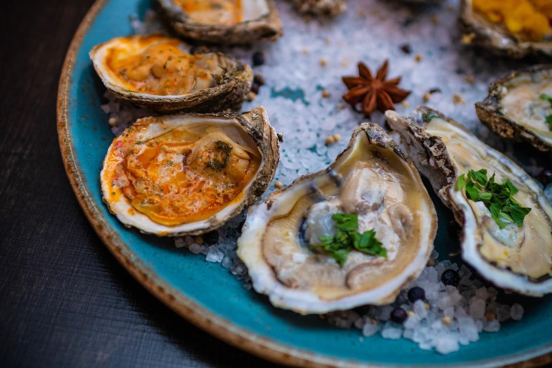 oyster1.jpeg