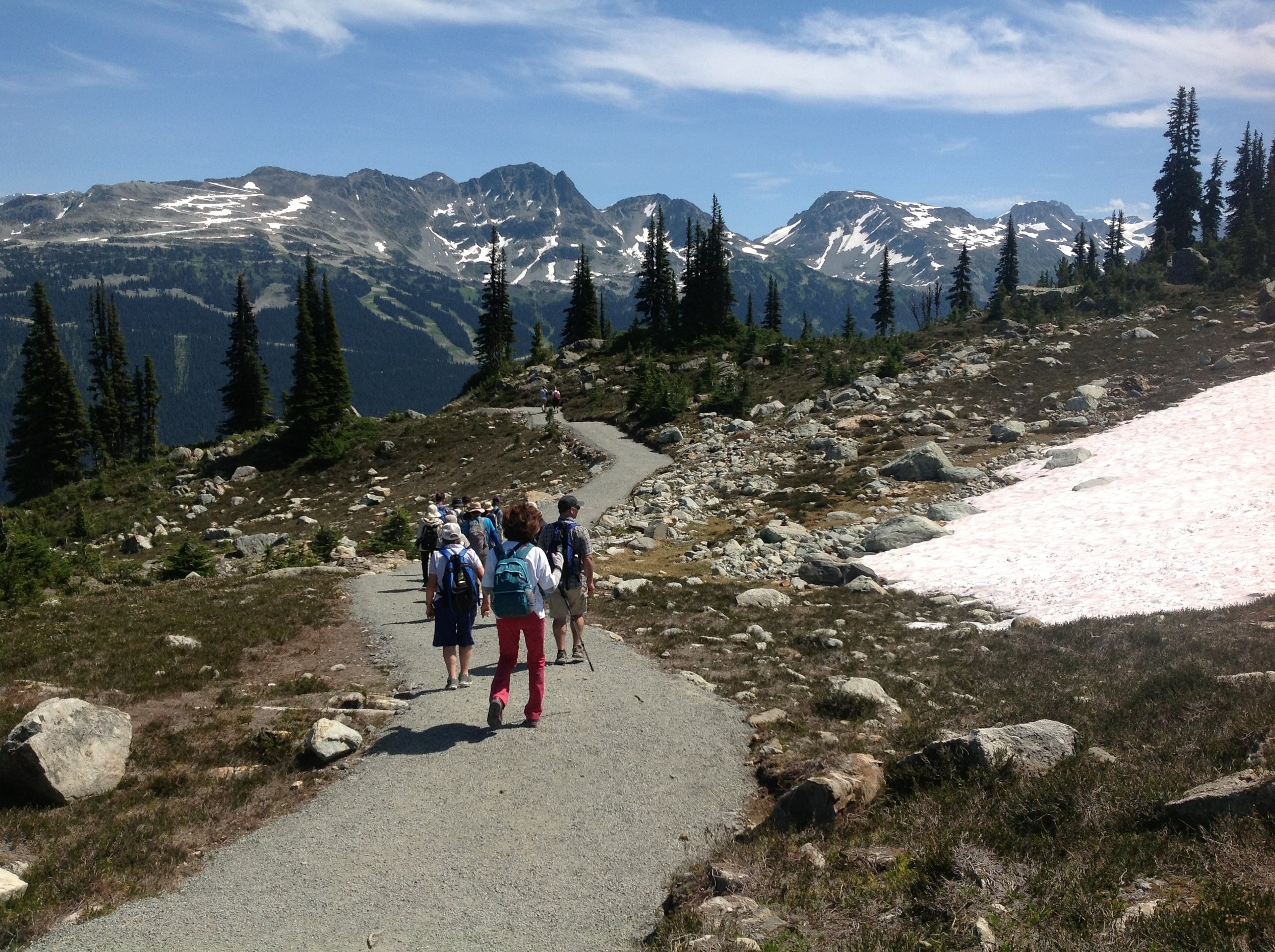 Trail Walk on Whistler Mountain.jpg