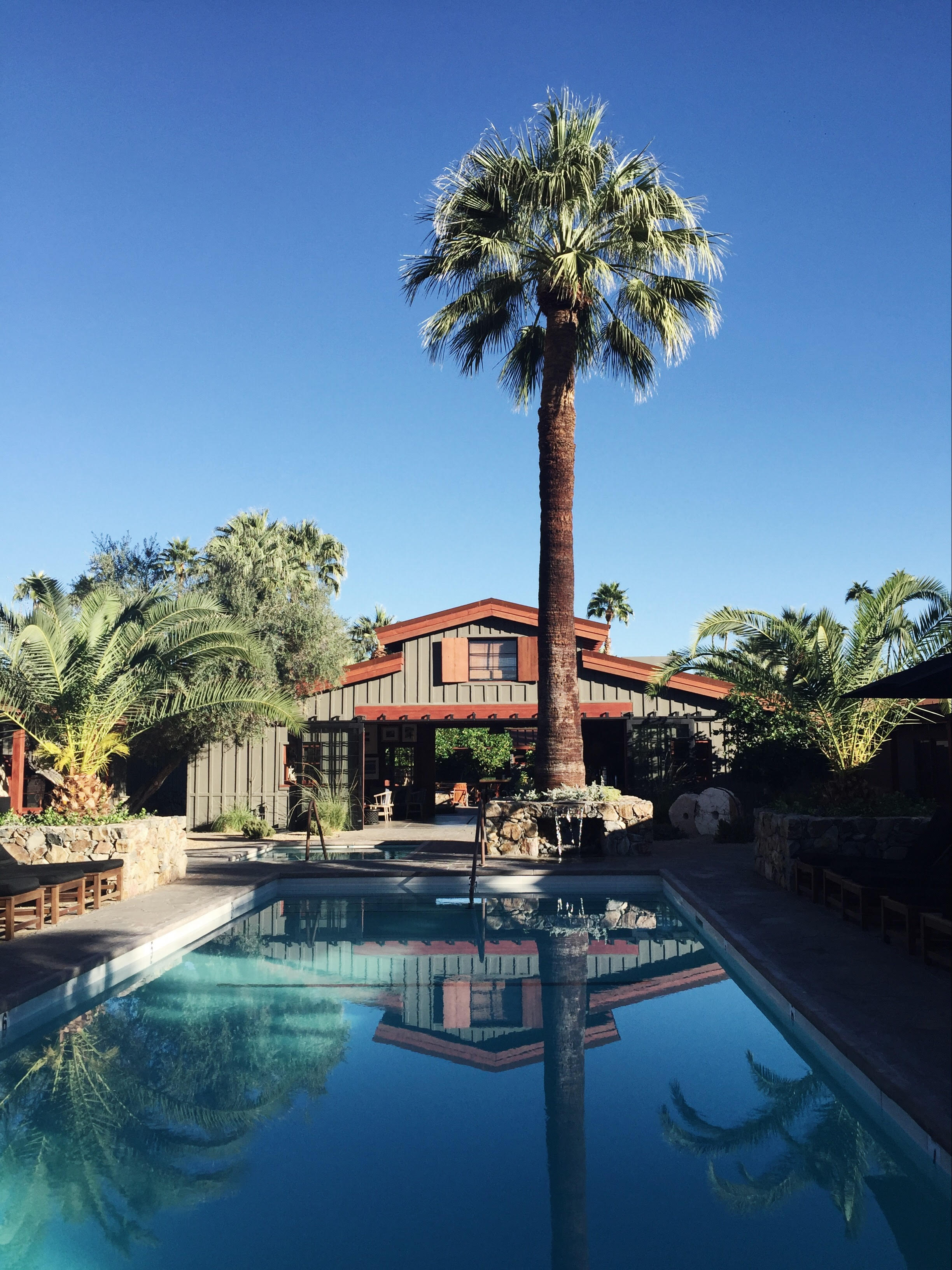 """Photography by Meghan Plowman, """"Palm Springs, Iconic"""" travel guide"""