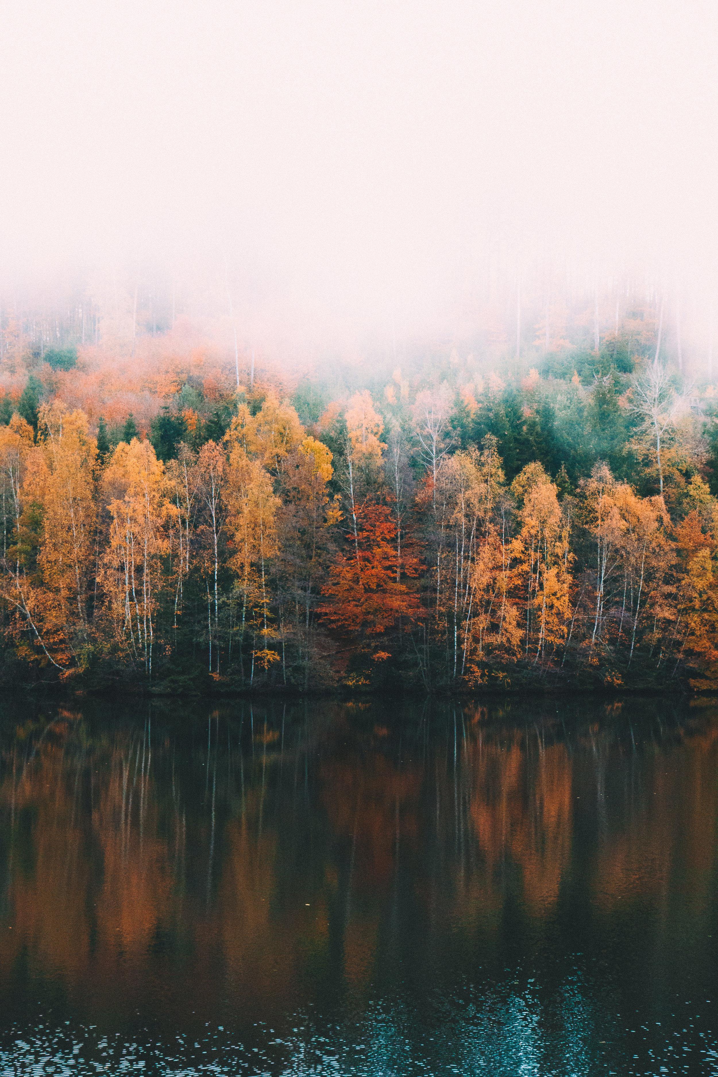 pexels-photo-167695.jpg