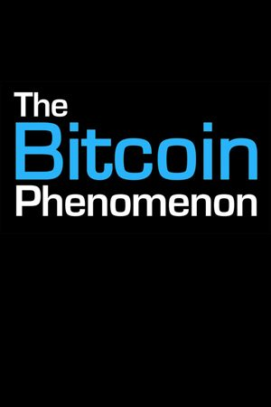 Bitcoin Phenomenon