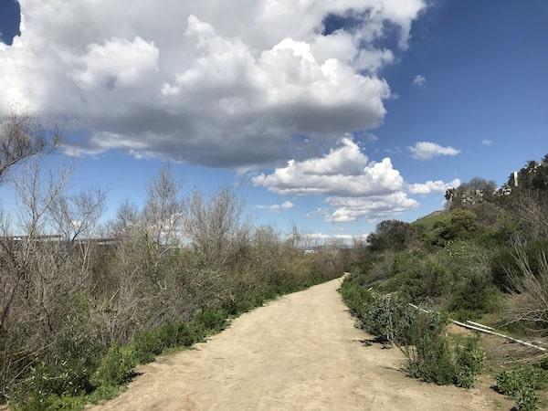 Walking trail near my office space