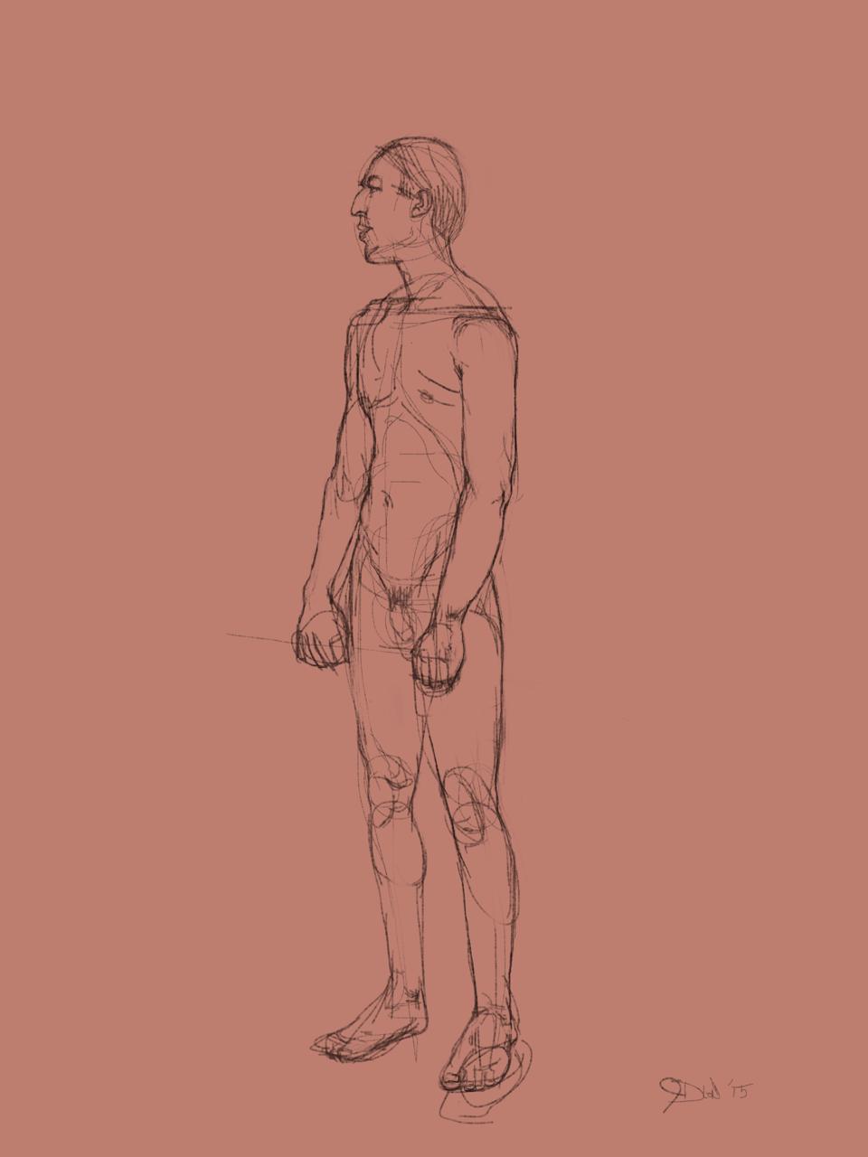 Standing male. Sketchbook Pro