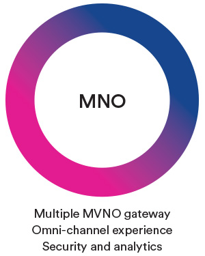 Multiple MVNO gateway Omni channel experience Security and analytics