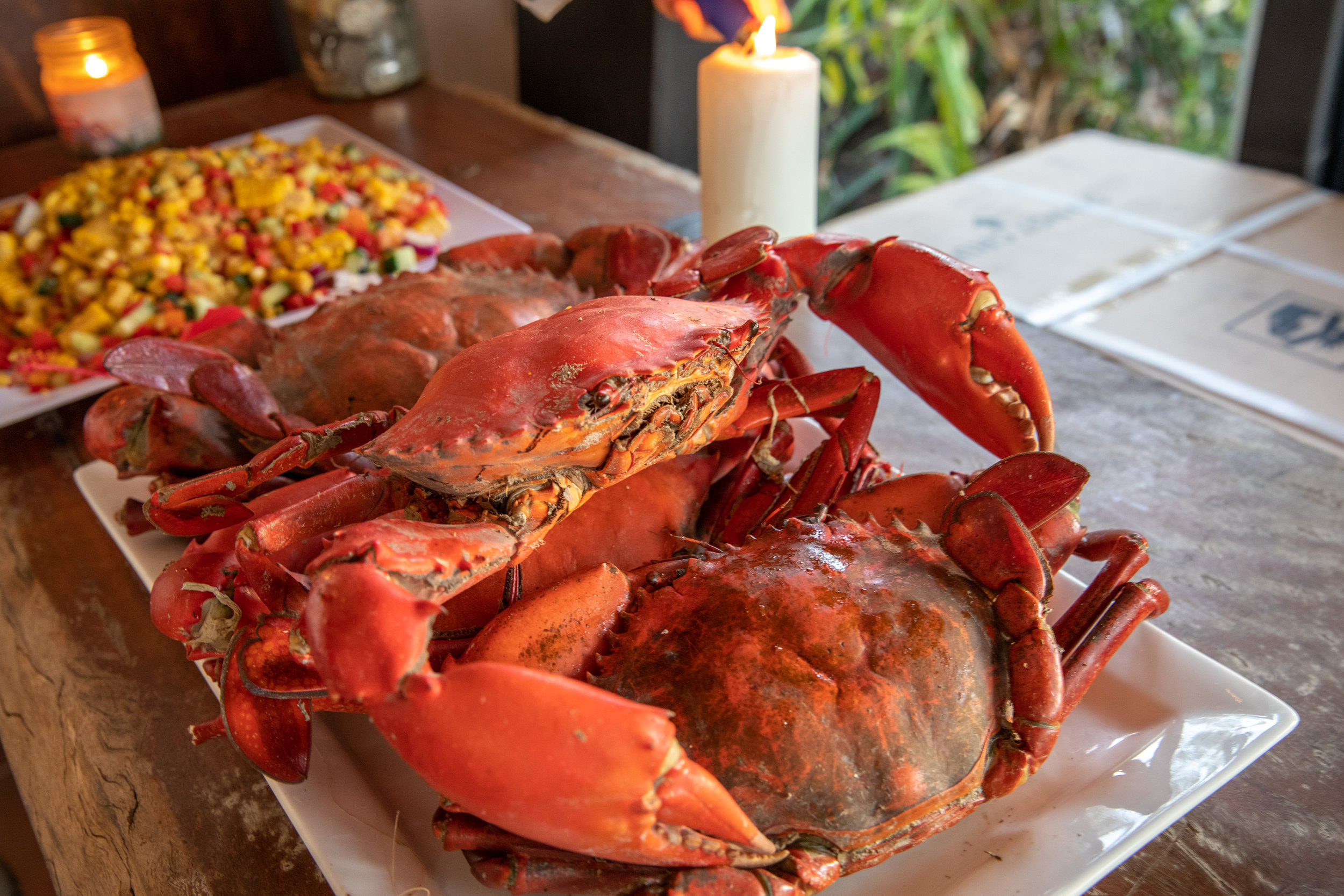 Love seafood? - Let our cook prepare your days catch or leisurely dine on locally caught seafood.