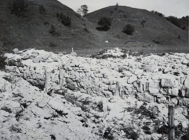 5. M.Apinis. Skats uz aizkraukli no baznicas drupam 1971.