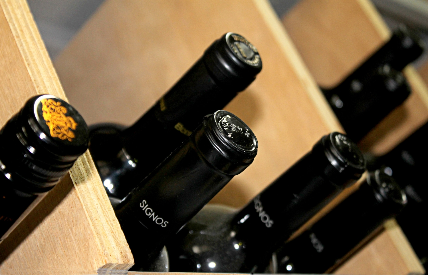Canva - Cellar, Wines, Drinks, Aging, Low Light, Stored.jpg