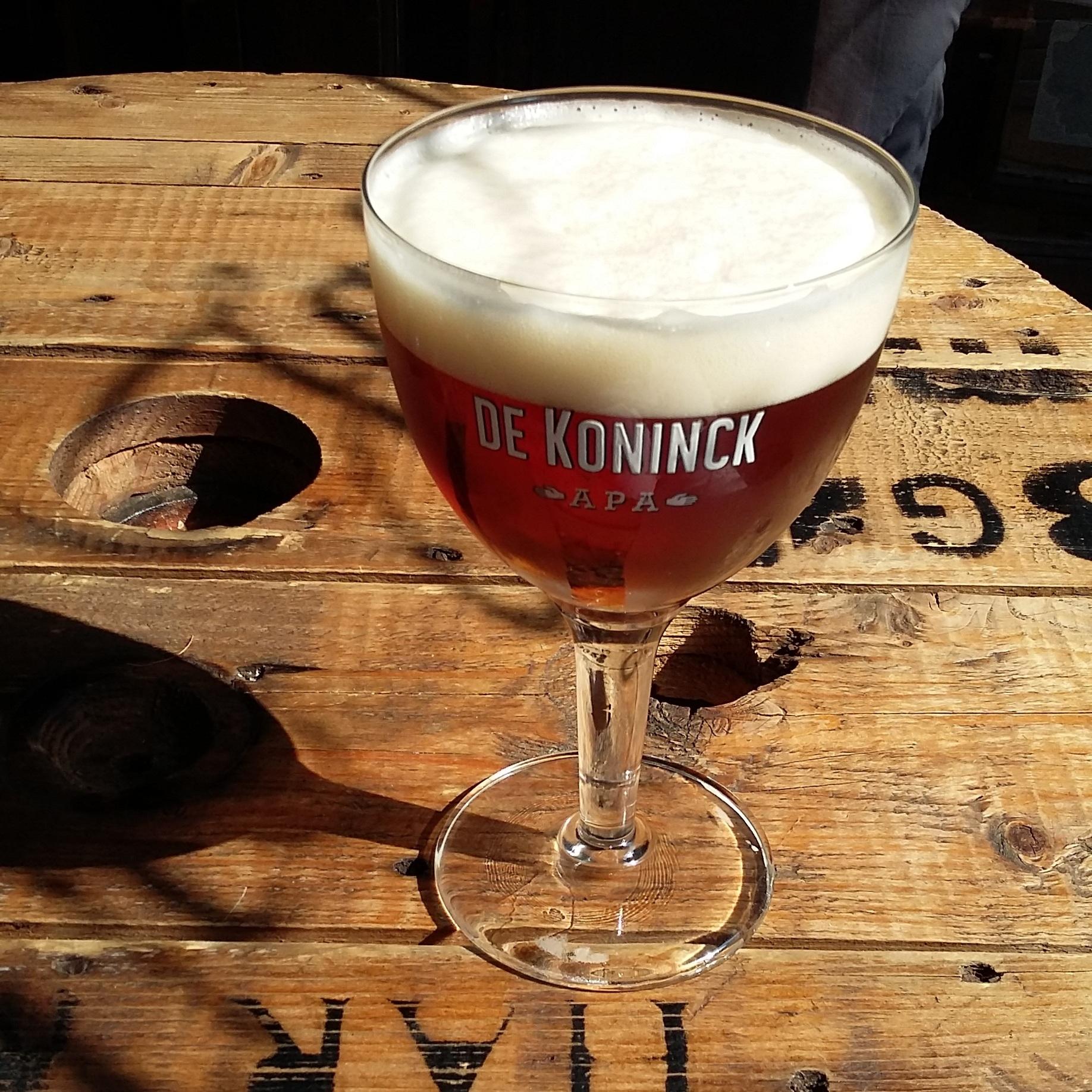Classic brown bar De Ware Jacob, Antwerp