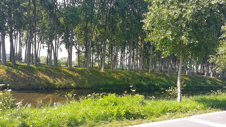 Flanders Canal Ride 3.jpg