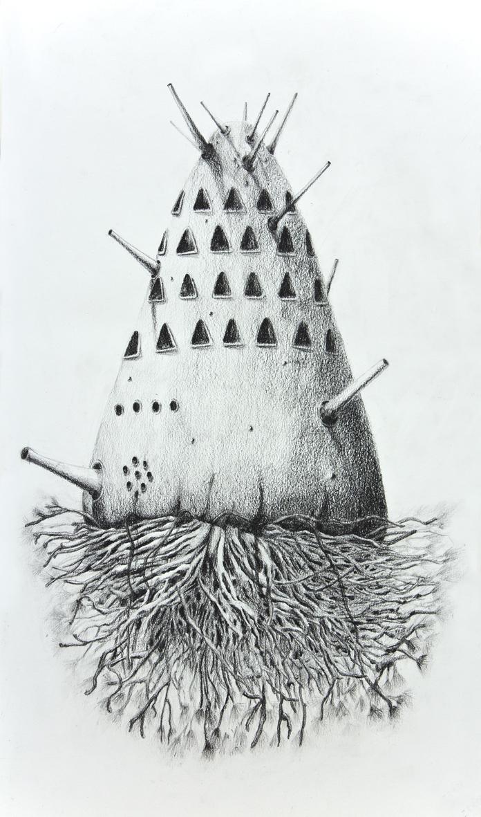 Ecosistema colombófilo