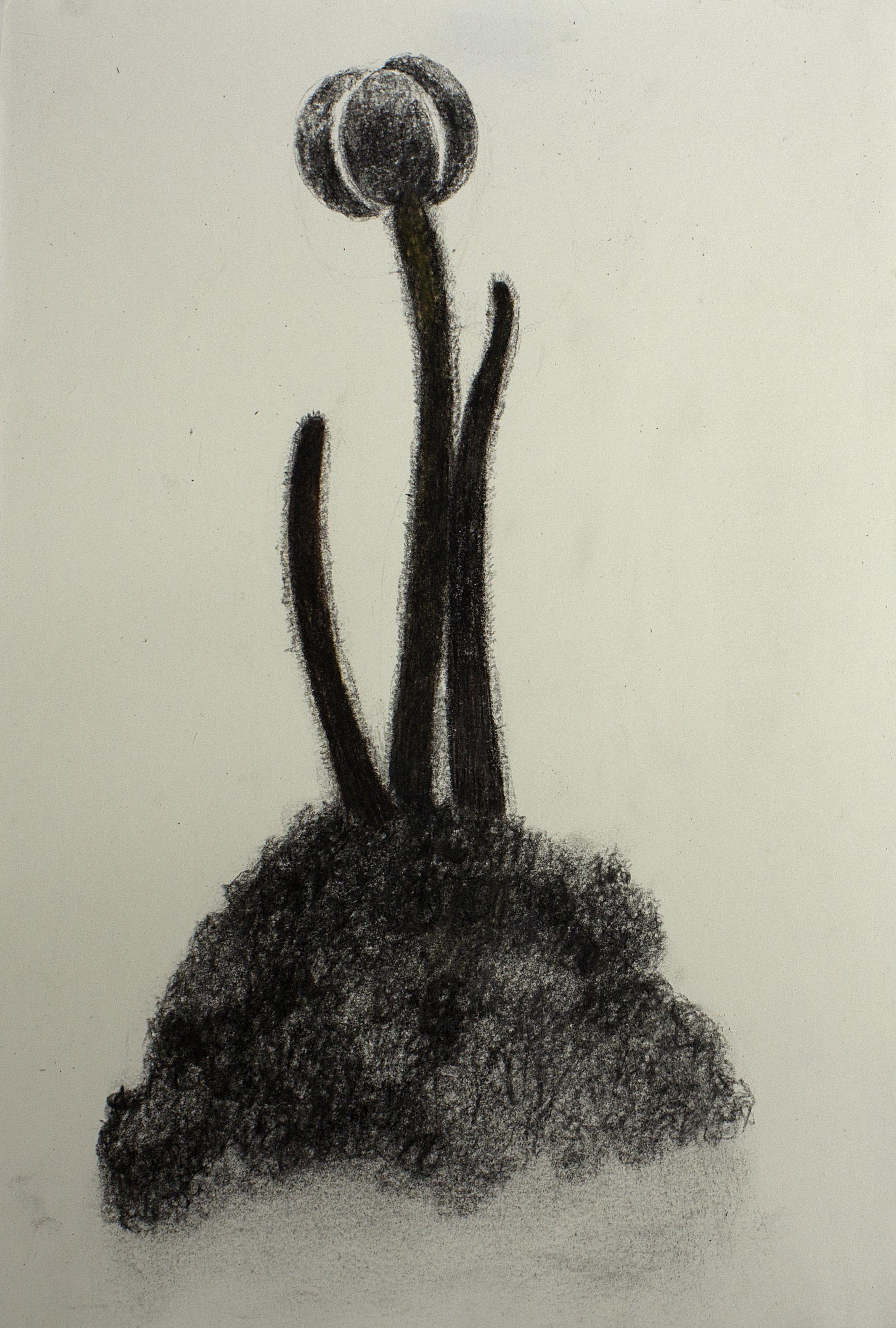 Bio-logo.
