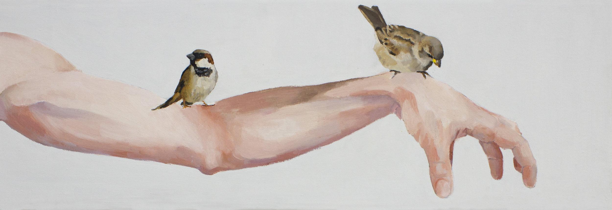 Dos gorriones con brazo.
