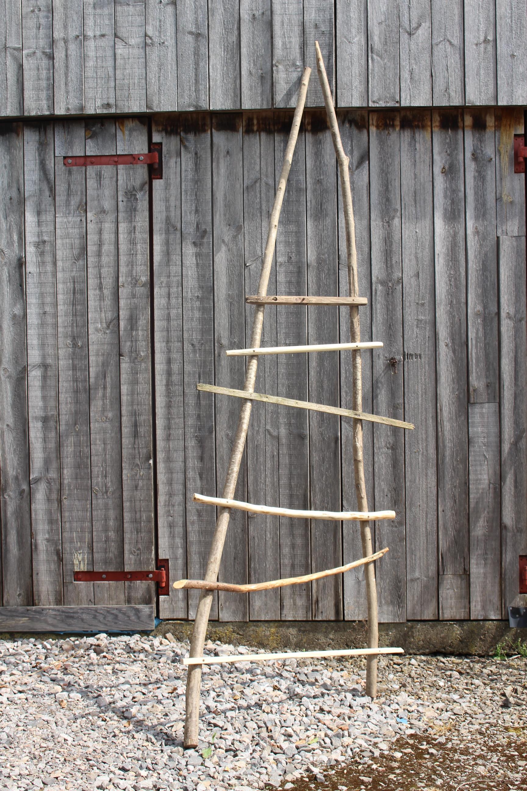 Rickety ladder.JPG