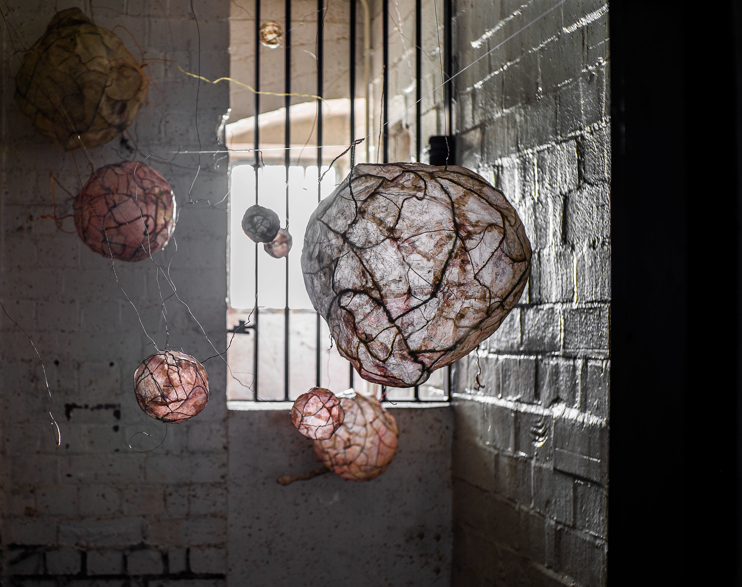 Cellular/Planetary structures - installed in the cell loo  Photos by Tchad Findlay