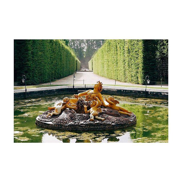 🌳 Bosquets de Versailles 🌳 #garden #groves #nature #fountain #versailles