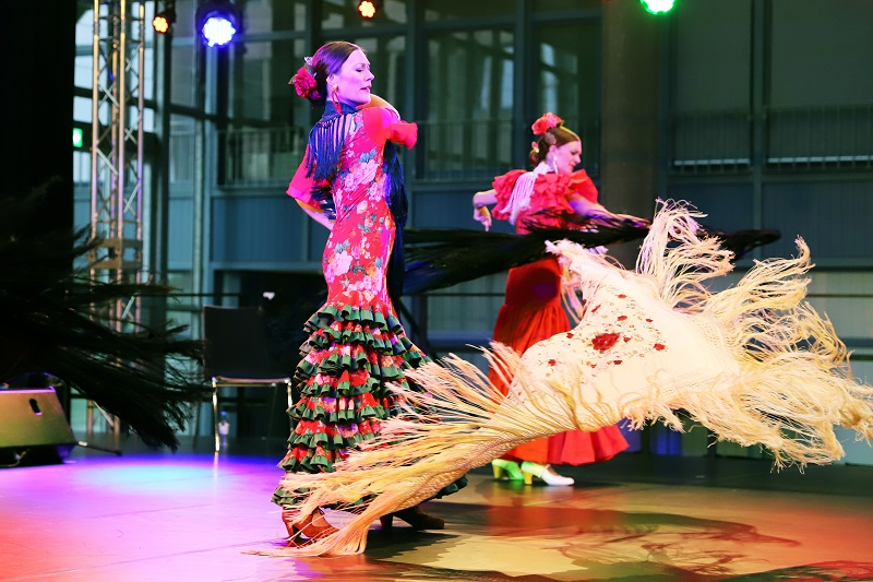 ZÜBLIN Kulturpreis 2018_Los angeles Flamencos_Platz 2 Kategorie ambitionierte Amateure_Fotografin Sibylle Nunez-Diaz.jpg