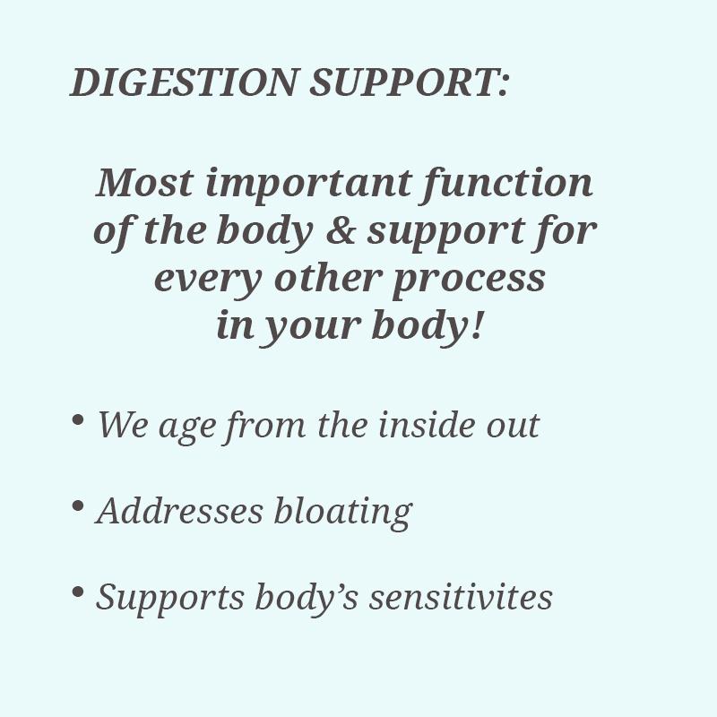 digestion text.jpg