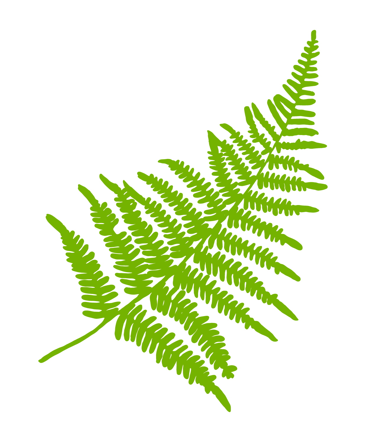 DBD_Element_Green_Fern.jpg