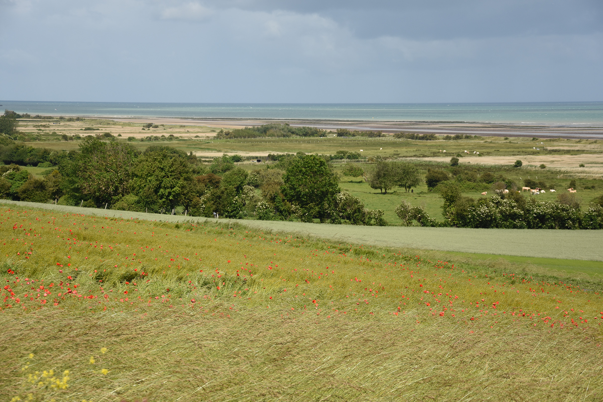 View from Mont Fleury, towards Gold Beach and the landing zone of 6th Battalion, The Green Howards