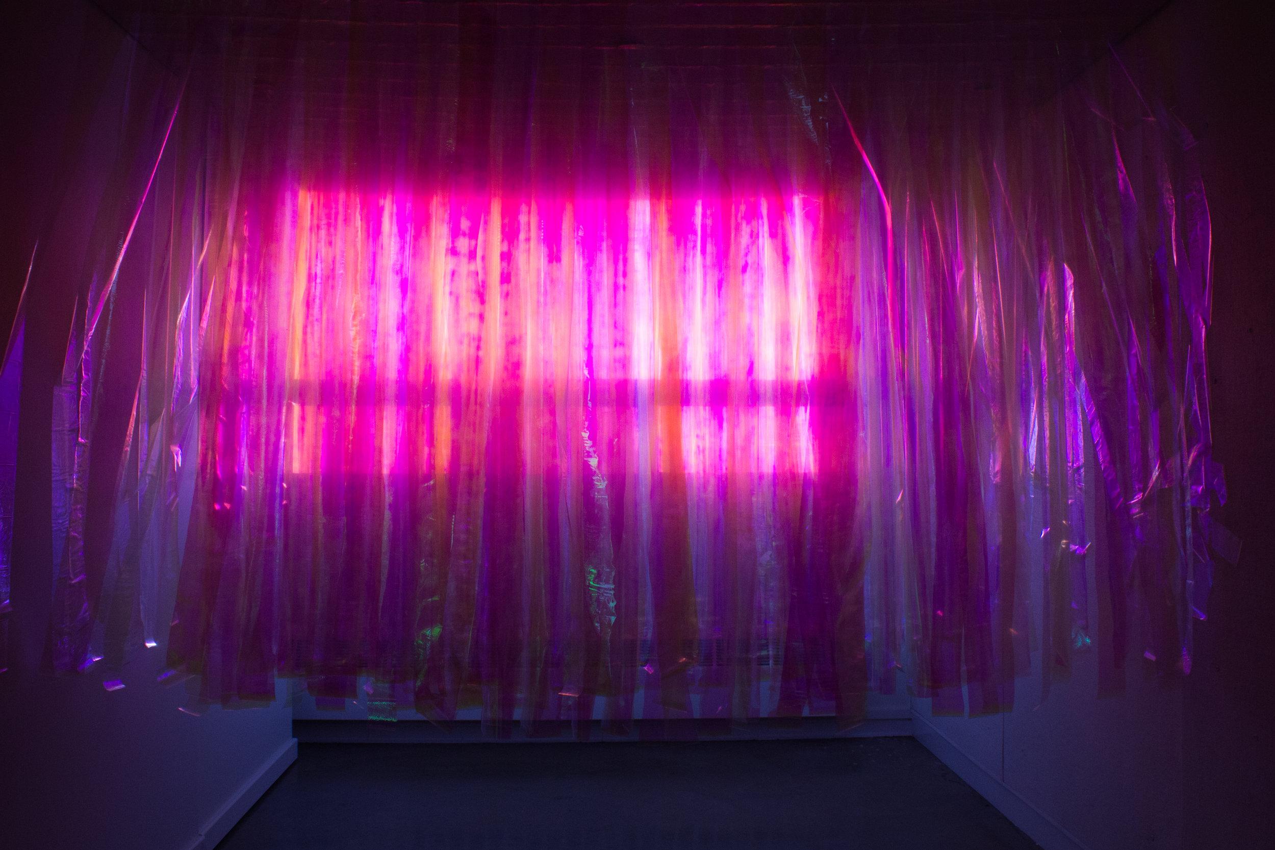 untitled installation no. 1