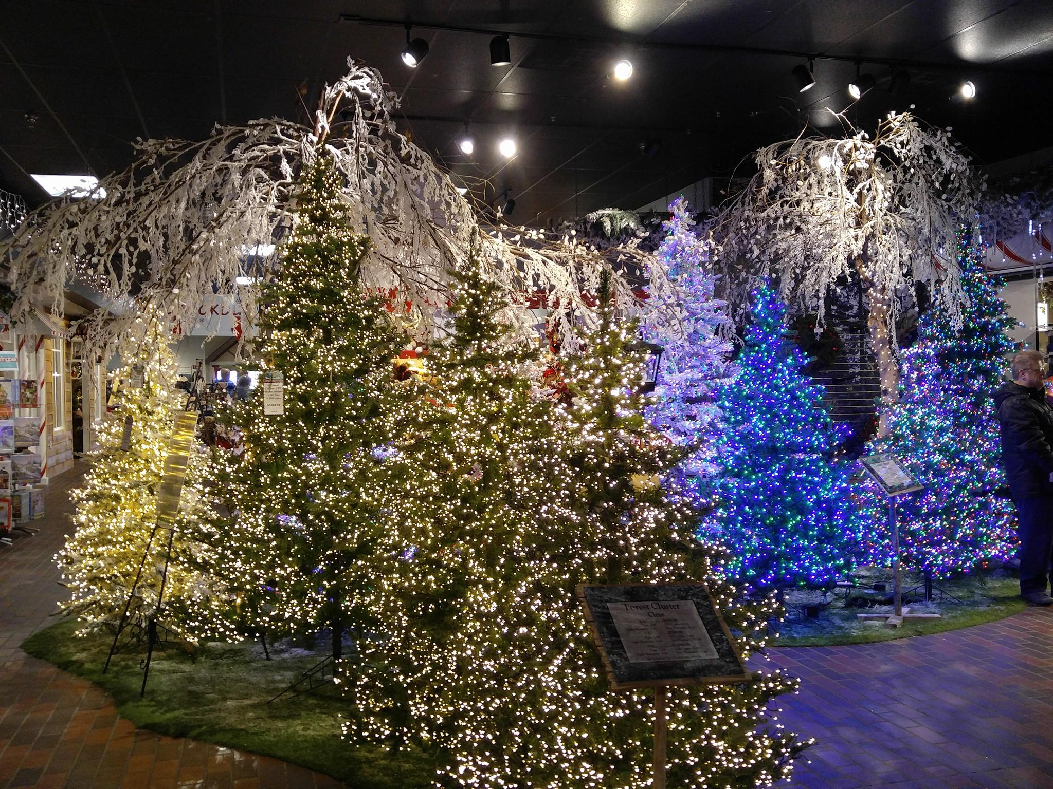 Christmas Place 4.jpg