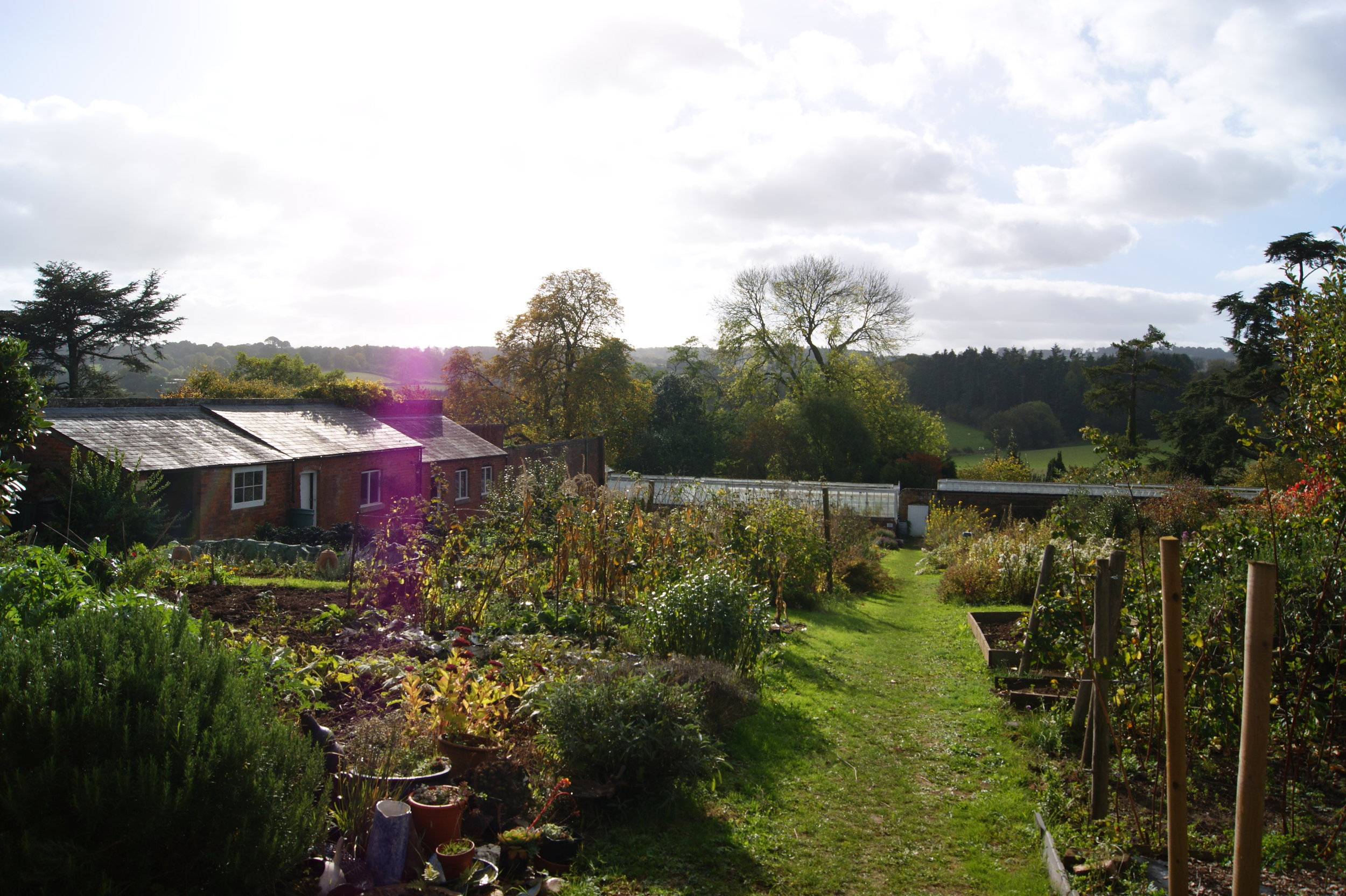 The Walled Garden in Autumn