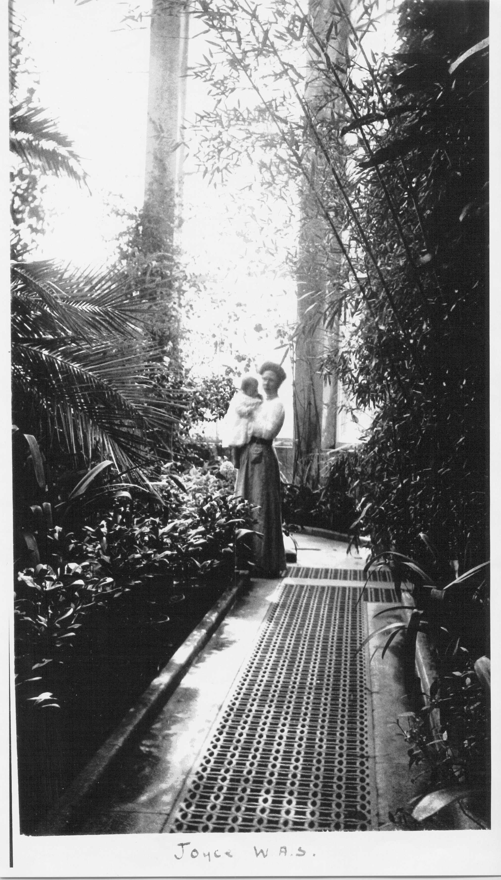 Joyce in the Palm House circa 1910 provided by Heather Colley .jpg