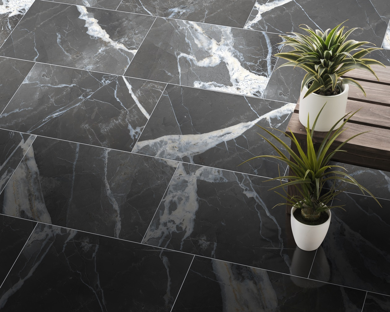 Calacatta-Black-Polished-Room-Scene.jpg