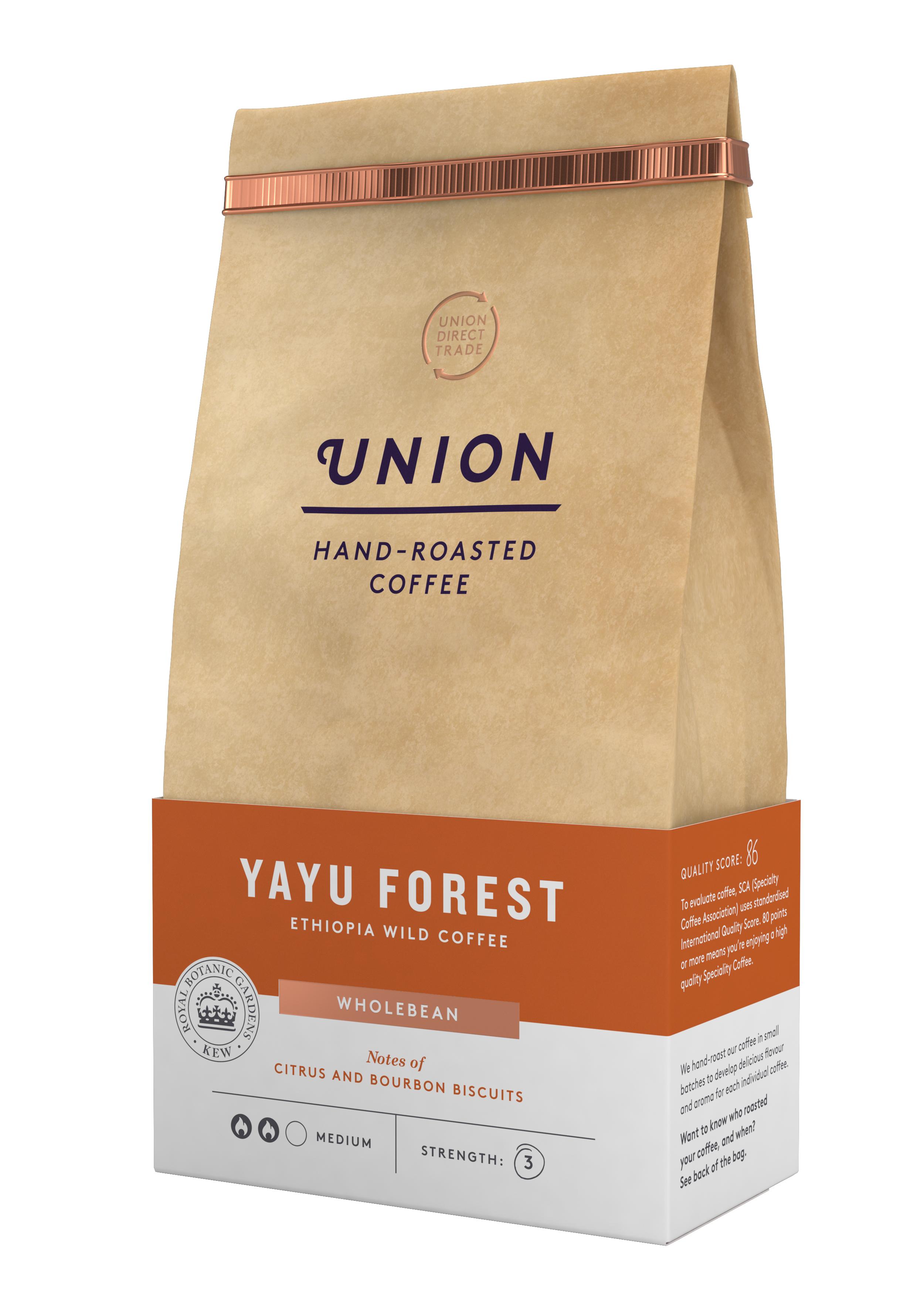 UNION_YAYU FOREST FINAL_A.JPG