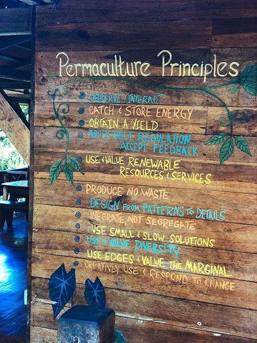 punta-mona-permaculture-principles.jpg