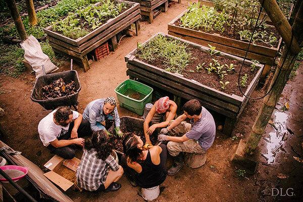 greenhouse-students.jpg
