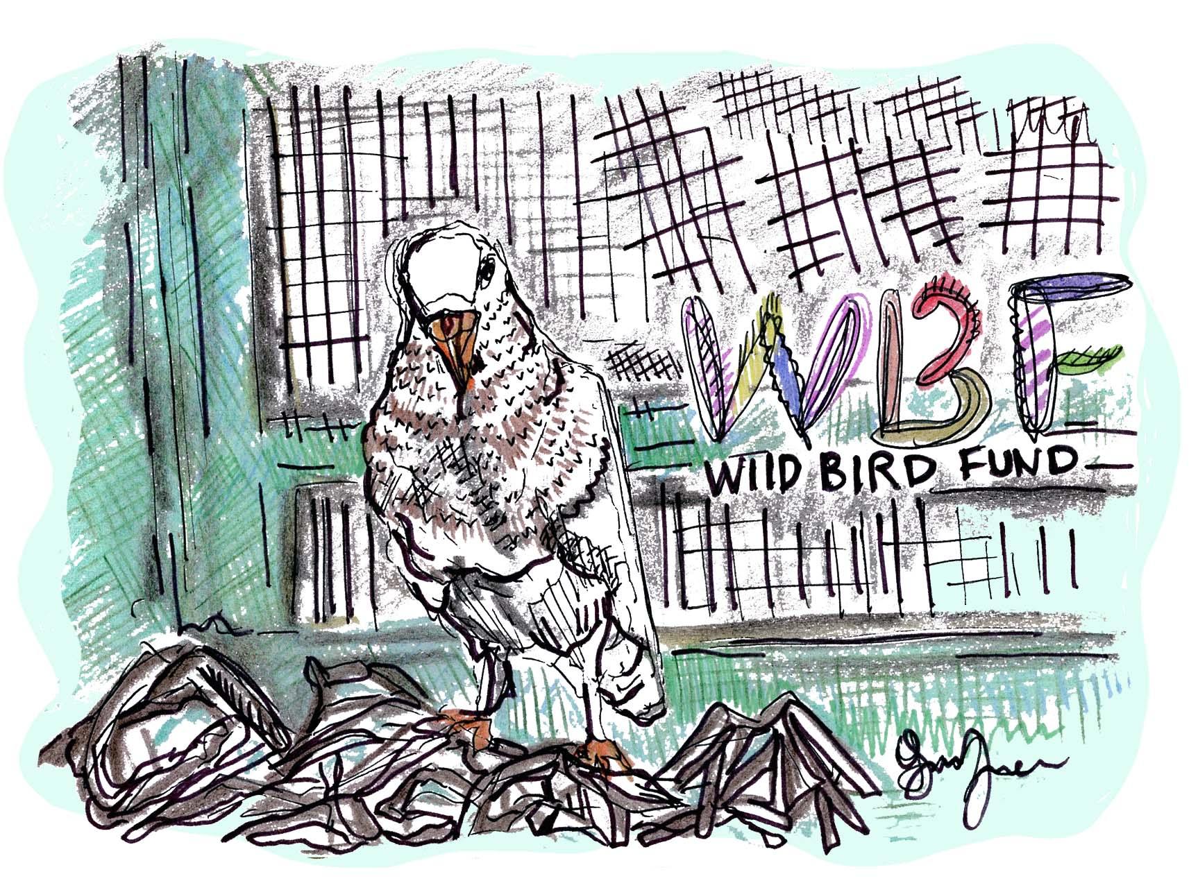 wildbirdfund_version2.jpg