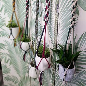 Pretty Cactus Plants will be offering simple macrame workshops.
