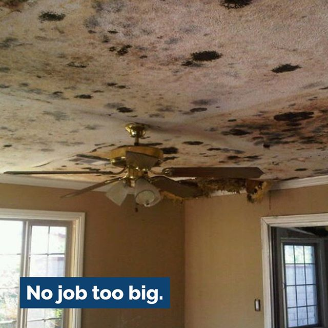 Taking care of severe leaks and mold can seem like a daunting task, but when we're on the case, you have nothing to worry about.