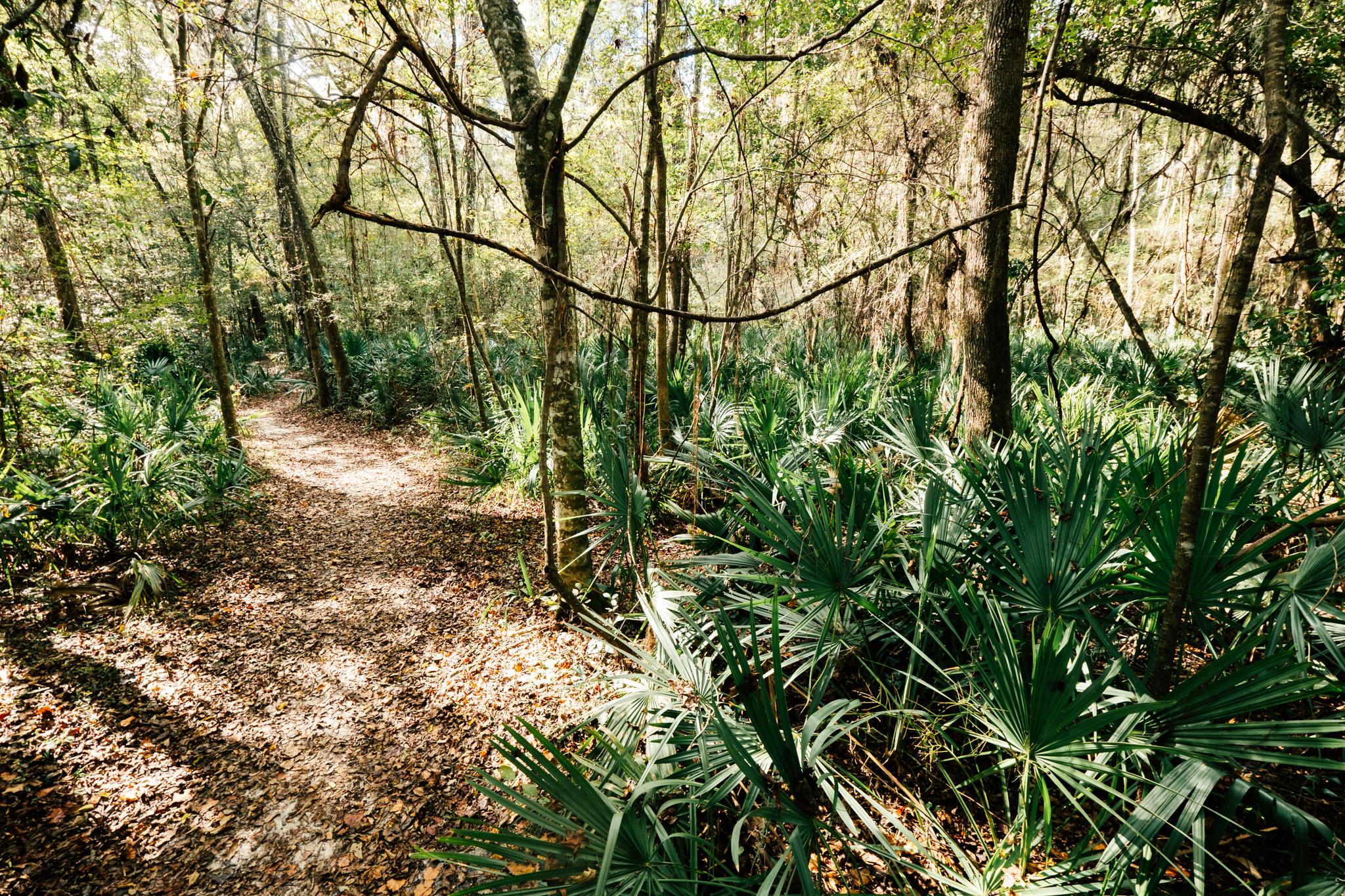 john mahon nature park -