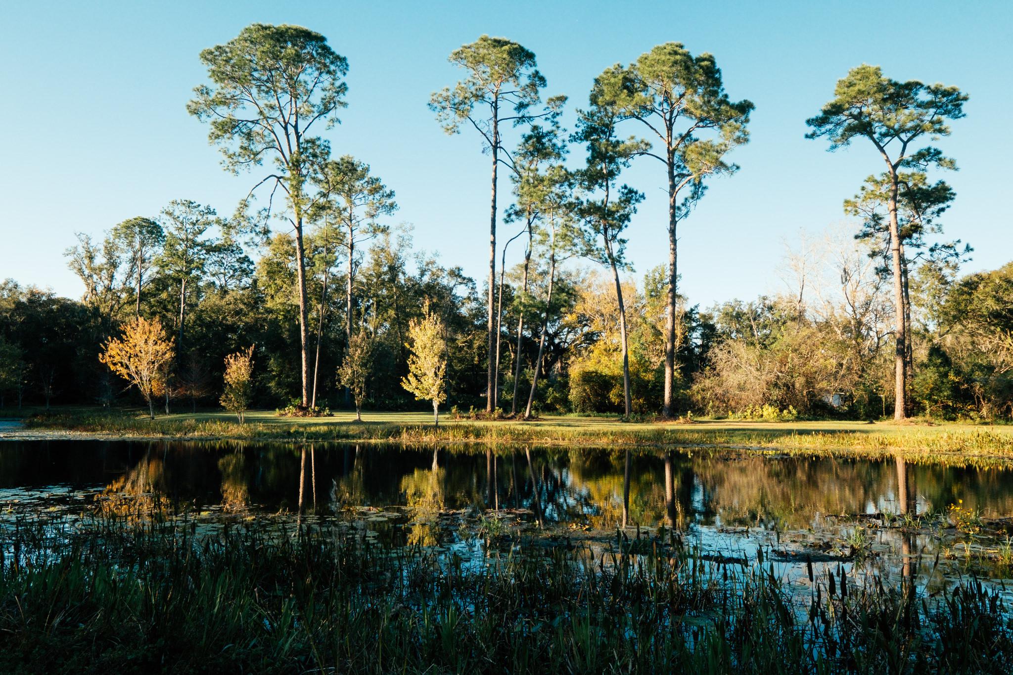 duval nature park -